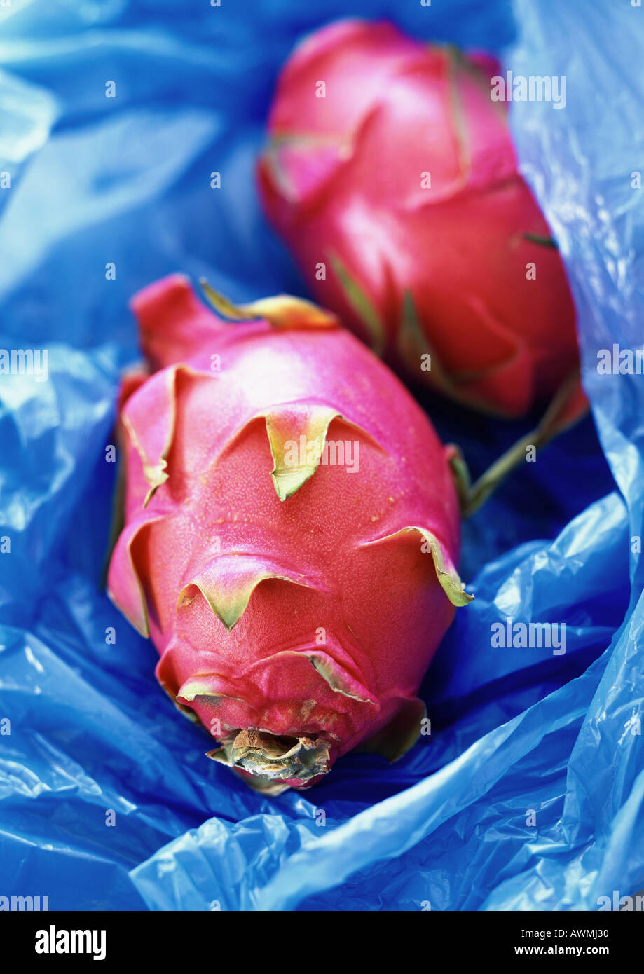 Red pitayas on blue plastic, close-up - Stock Image