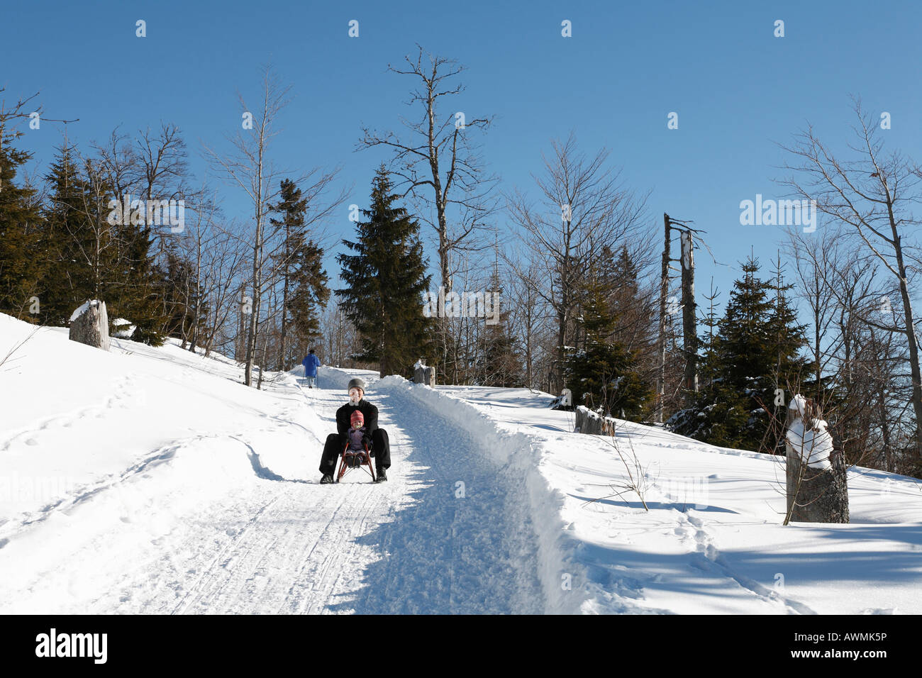 Sledders going down a wintry path, Lusen, Nationalpark Bayerischer Wald (Bavarian Forest National Park), Lower Bavaria, - Stock Image