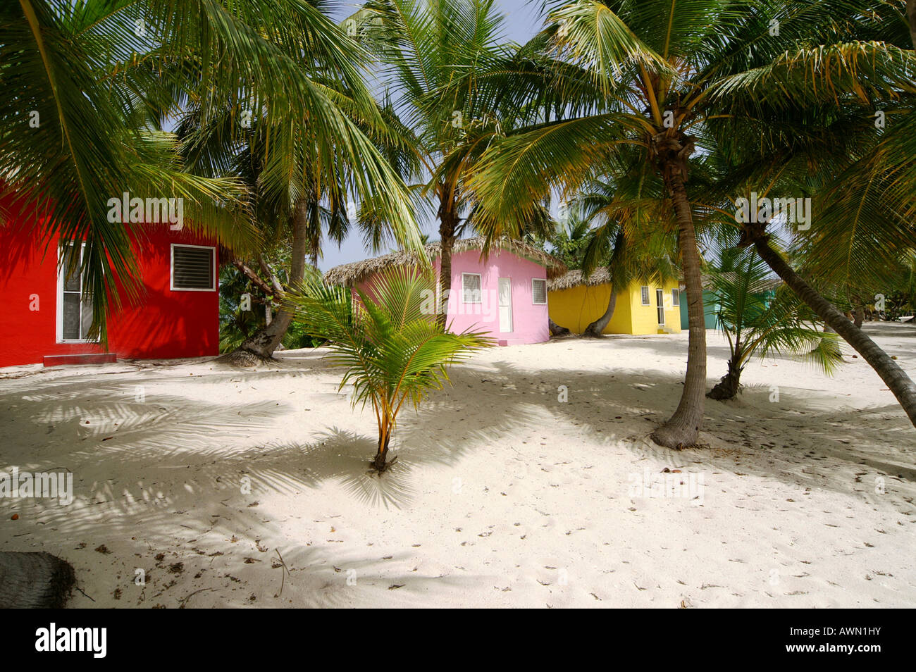 Colourful Caribbean guesthouses on the beach, Catalina Island, Dominican Republic, Caribbean, Americas - Stock Image