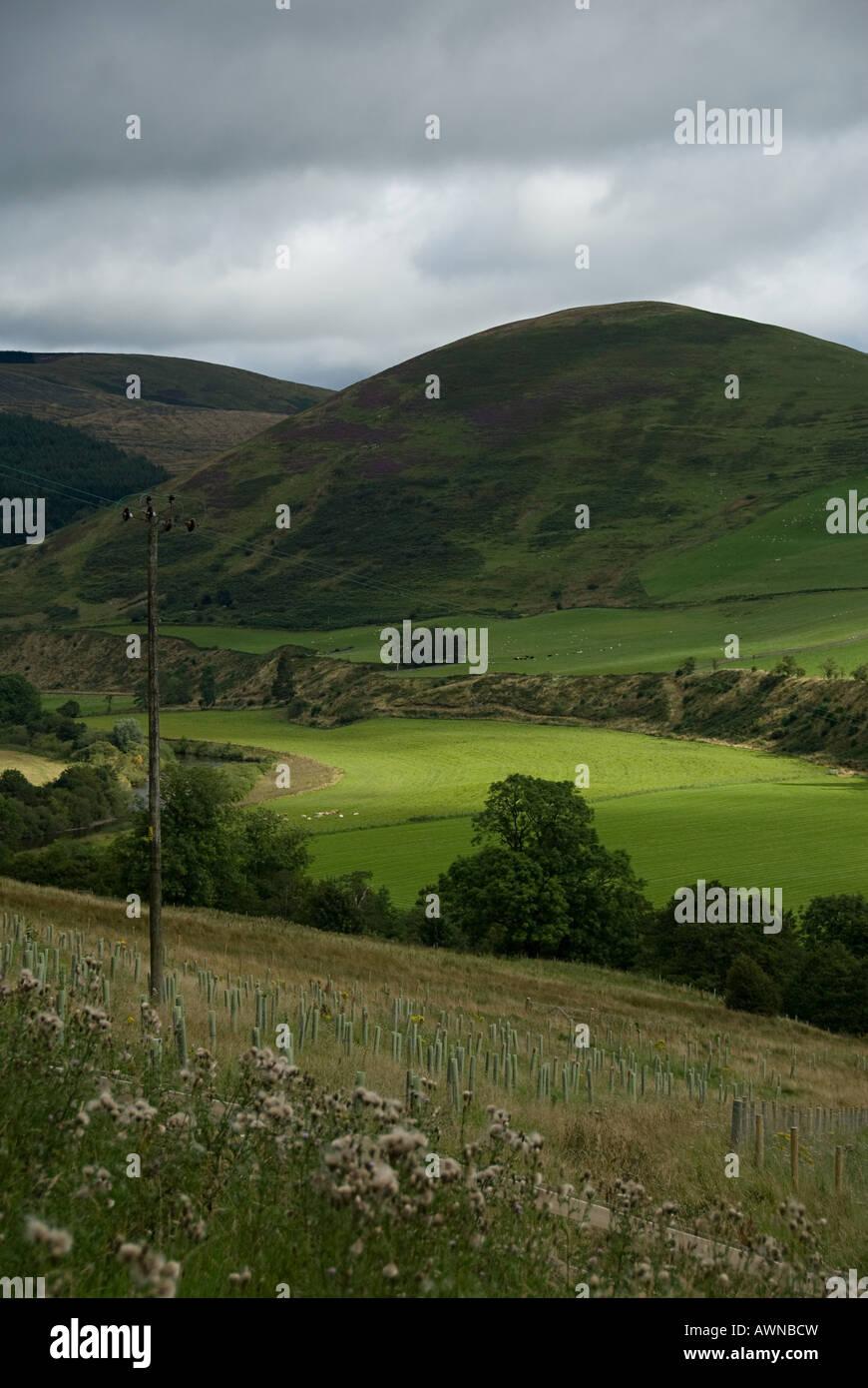 Scottish landscape - Stock Image