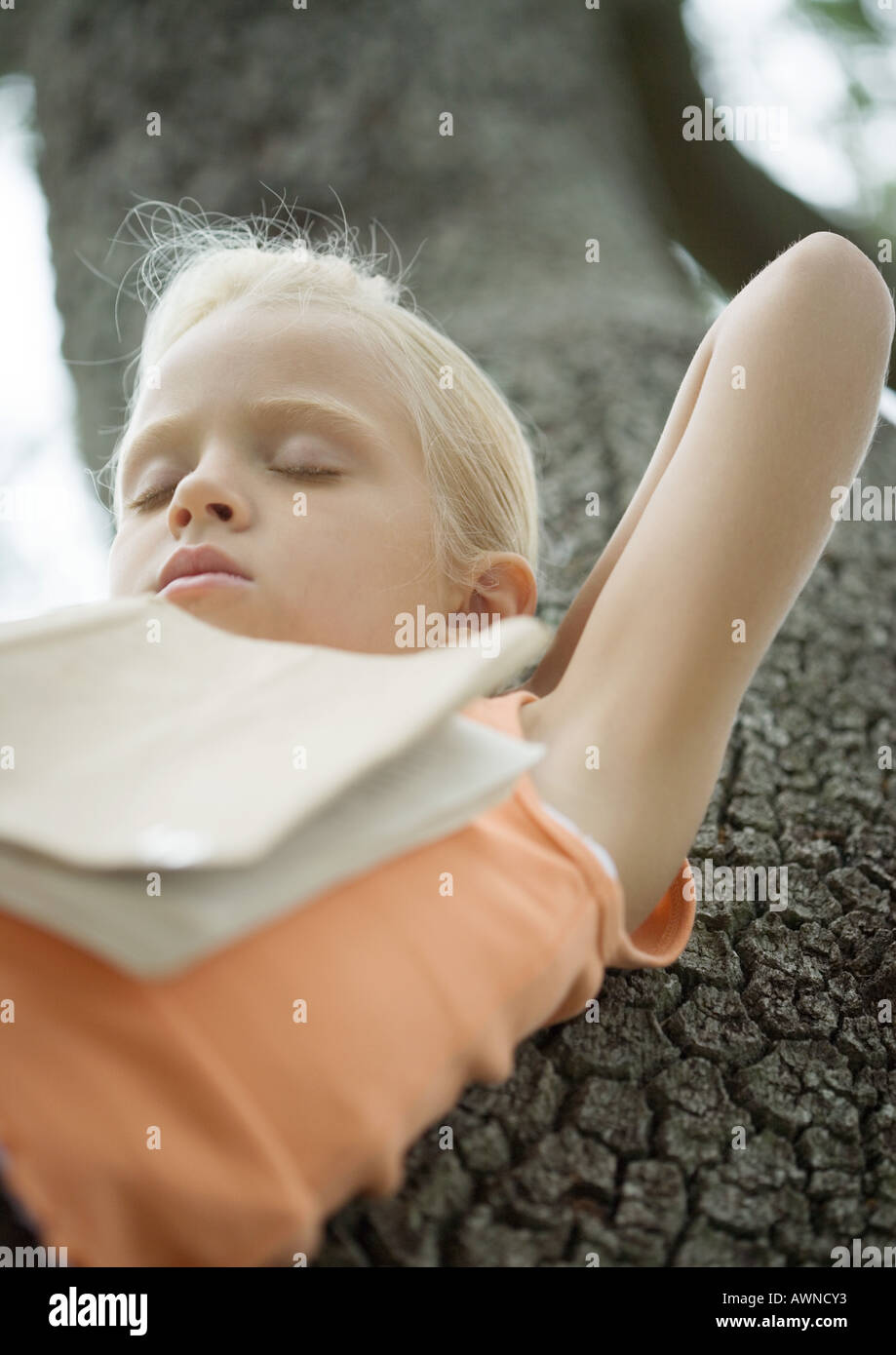 Girl in tree sleeping with book on chest Stock Photo
