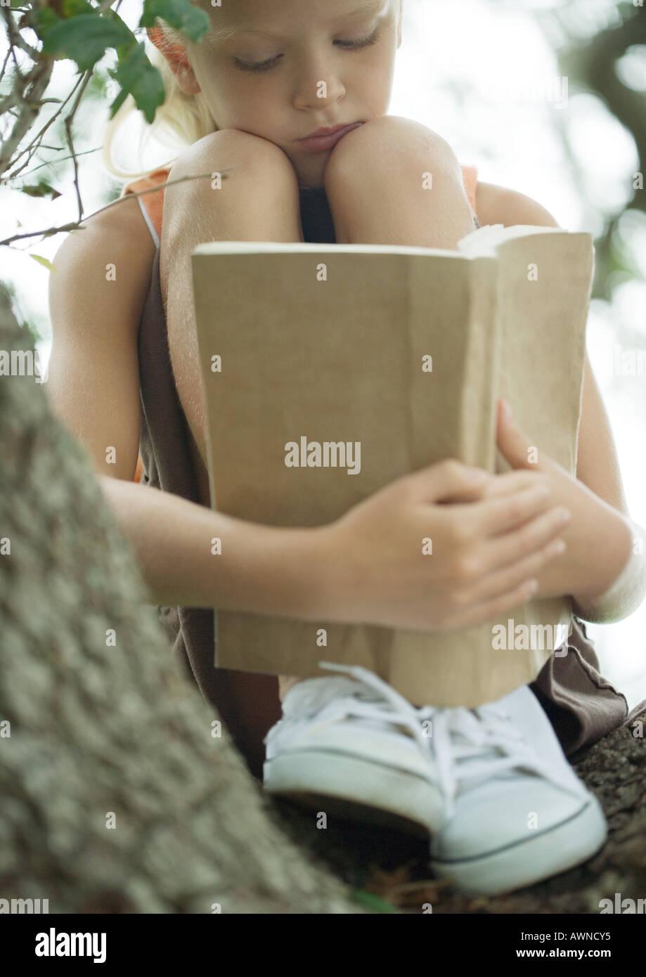Girl in tree reading book - Stock Image