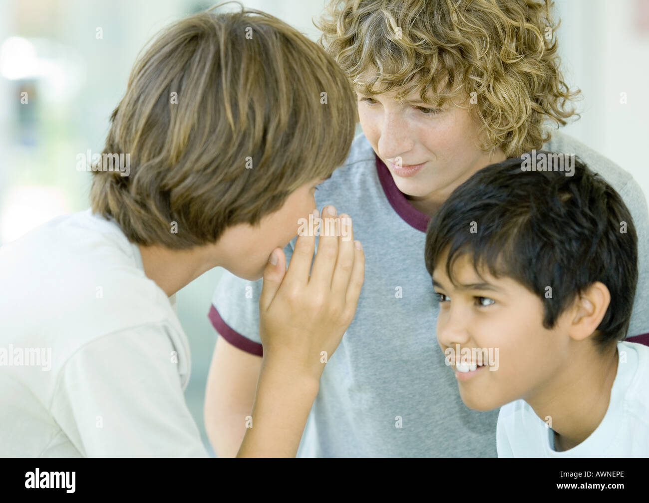 Preteen boys whispering - Stock Image