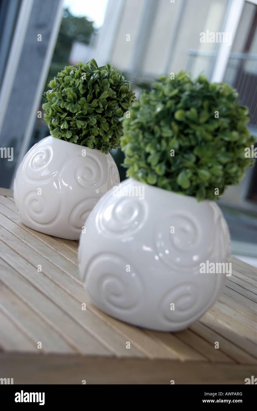 Deko Dekoration Gruenpflanze Gruenpflanzen Grünpflanze Grünpflanzen Pflanze Pflanzen Plastikpflanze Plastikpflanzen - Stock Image