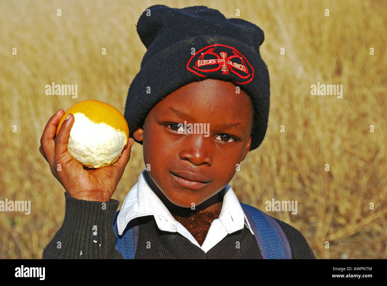 Dark skinned Boy with an orange, Midlands, KwaZulu-Natal, South Africa Stock Photo