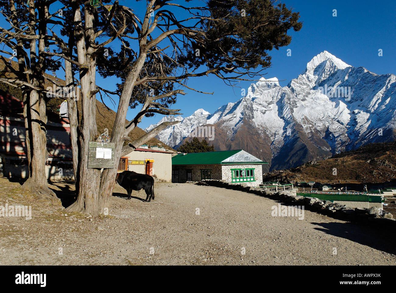 Sherpa village Khumjung with Thamserku (6608), Sagarmatha National Park, Khumbu, Nepal - Stock Image