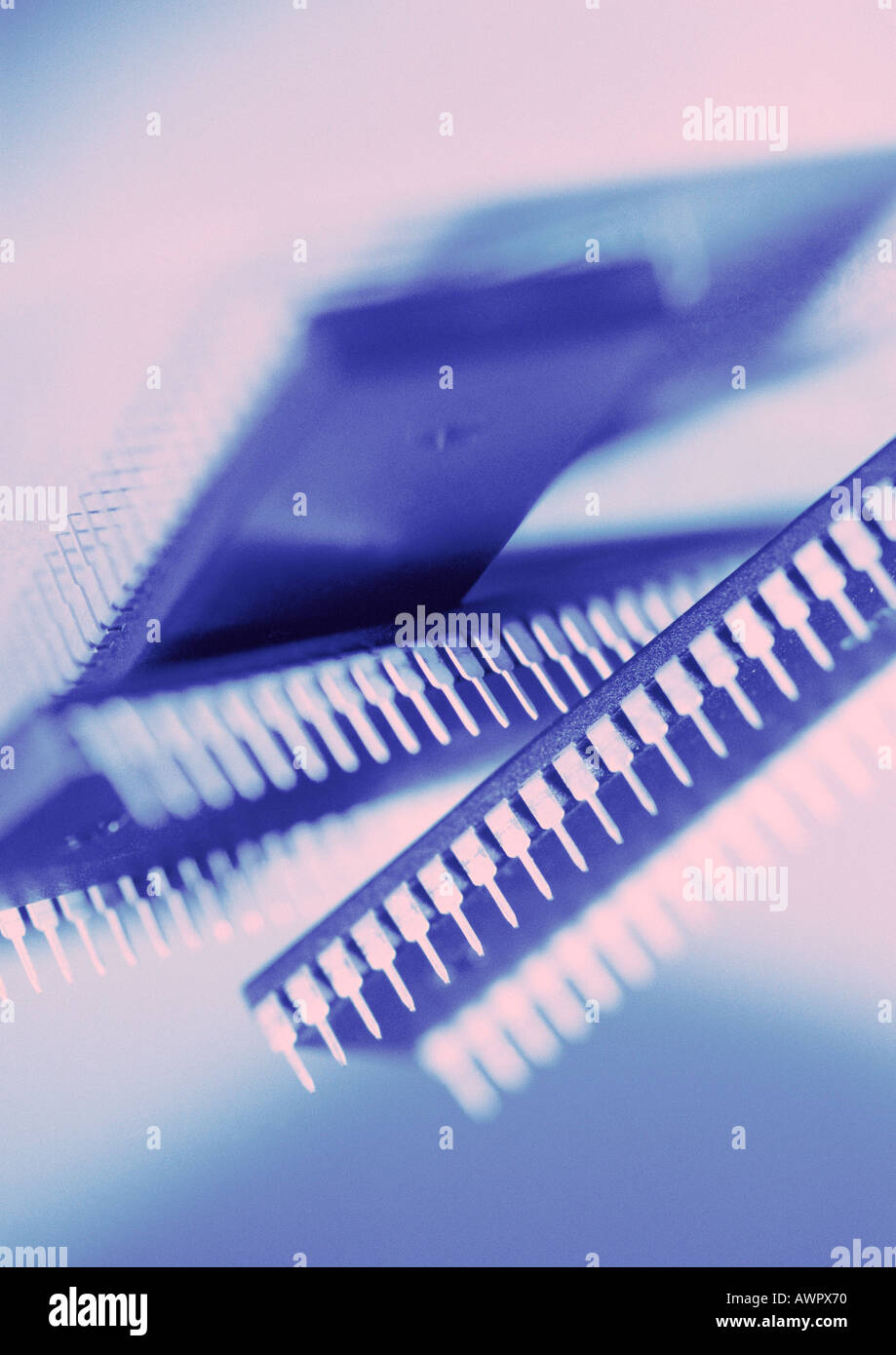 Computer circuits, close-up - Stock Image