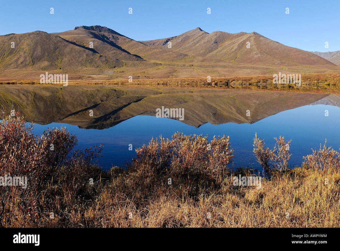 Lake in Tombstone Territorial Park, Dempster Highway, Yukon Territory, Canada - Stock Image