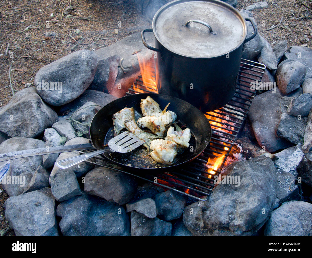 Cooking And Frying Fish Over Campfire Yukon Territory Canada