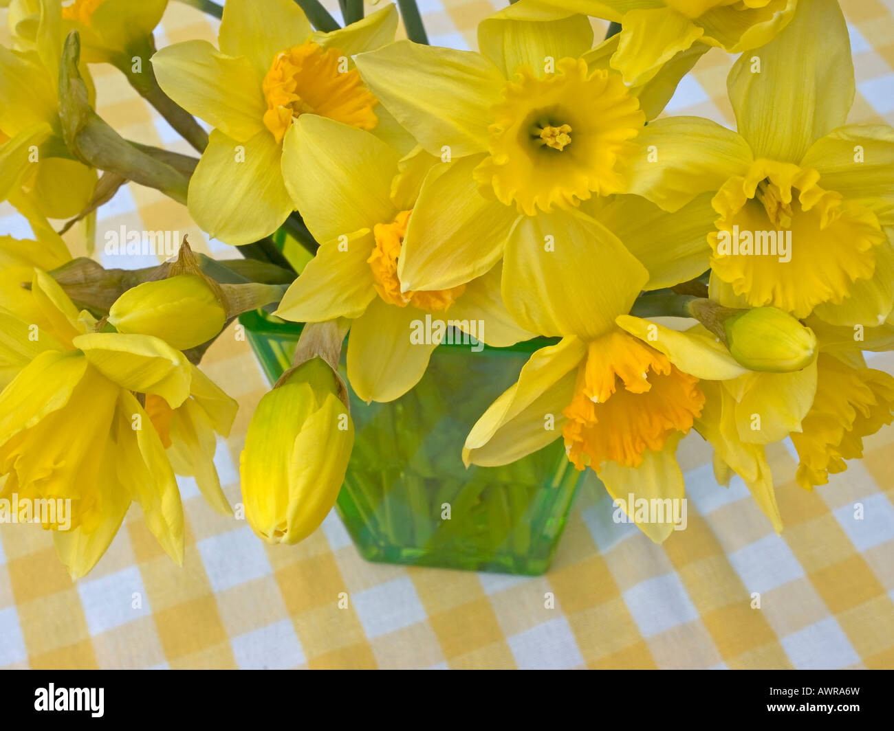 Bouquet Of Spring Flowers Daffodils Jonquils In A Vase Stock Photo
