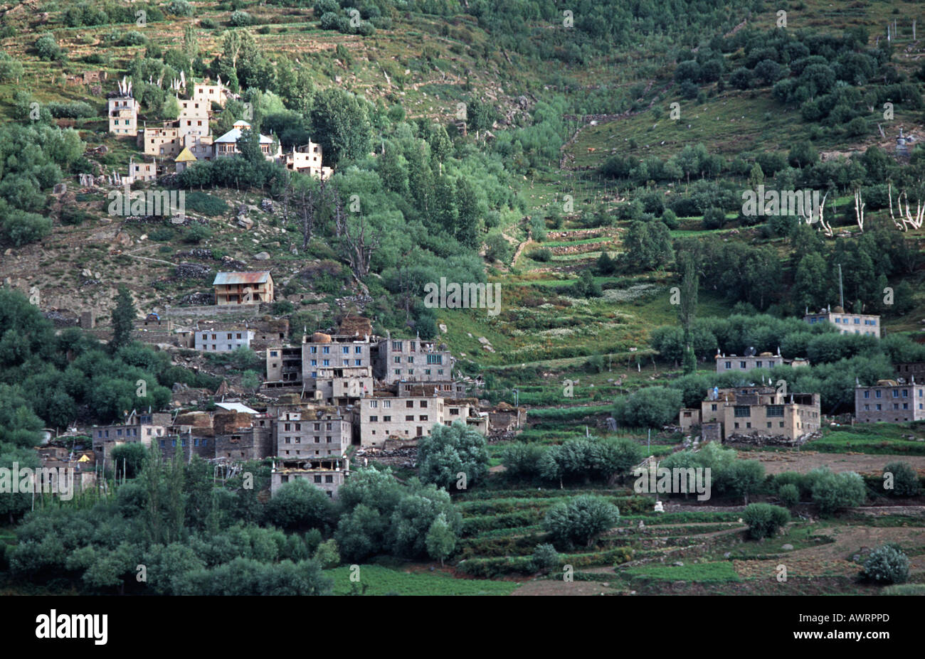 Rural Himalayan settlement scattered across the green slopes of Himachal Pradesh near Keylong Northern India - Stock Image