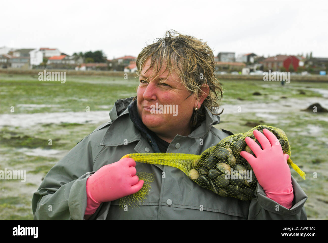 Fisher with her catch of fresh clams (Veneridae) in Cambados, Galicia, Spain, Europe - Stock Image