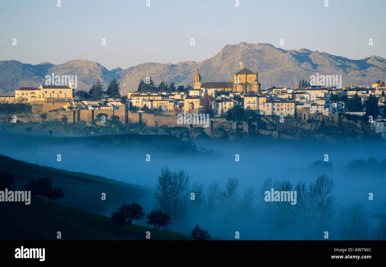Ronda in the province of Malaga Andalucia Spain. Valley with early morning mist Moody Landscape photography mountains trees - Stock Image