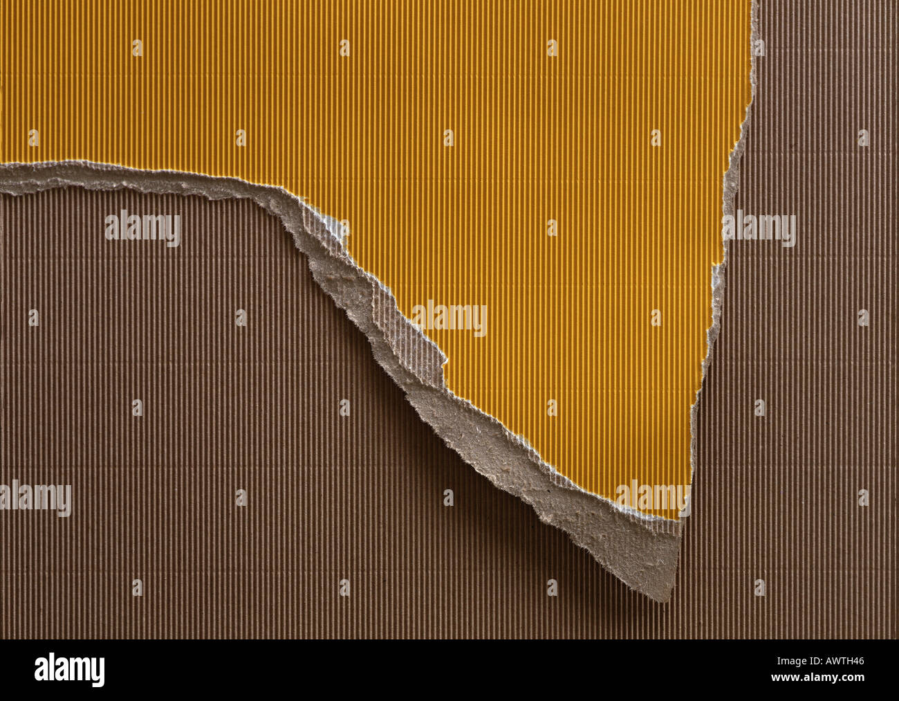 Ripped piece of yellow corrugated paper, on top of brown corrugated paper, close-up, full frame. - Stock Image