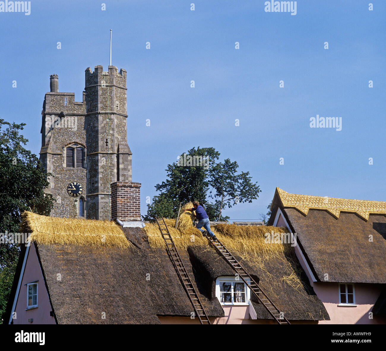Thatching the ridge of a cottage in Cavendish Suffolk - Stock Image