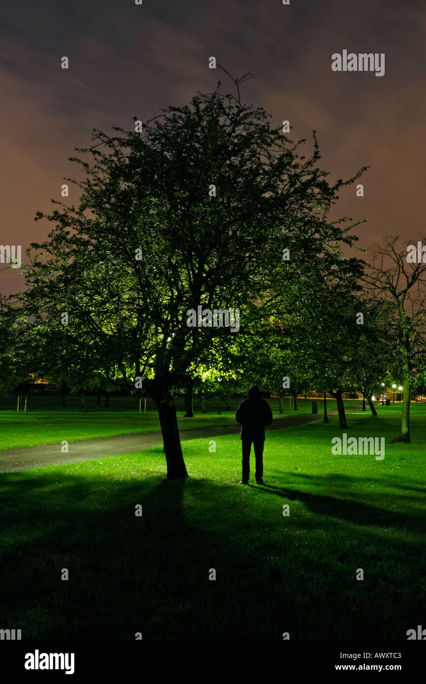 man stood under a tree in a park at night looking out towards a path and street lamps - Stock Image