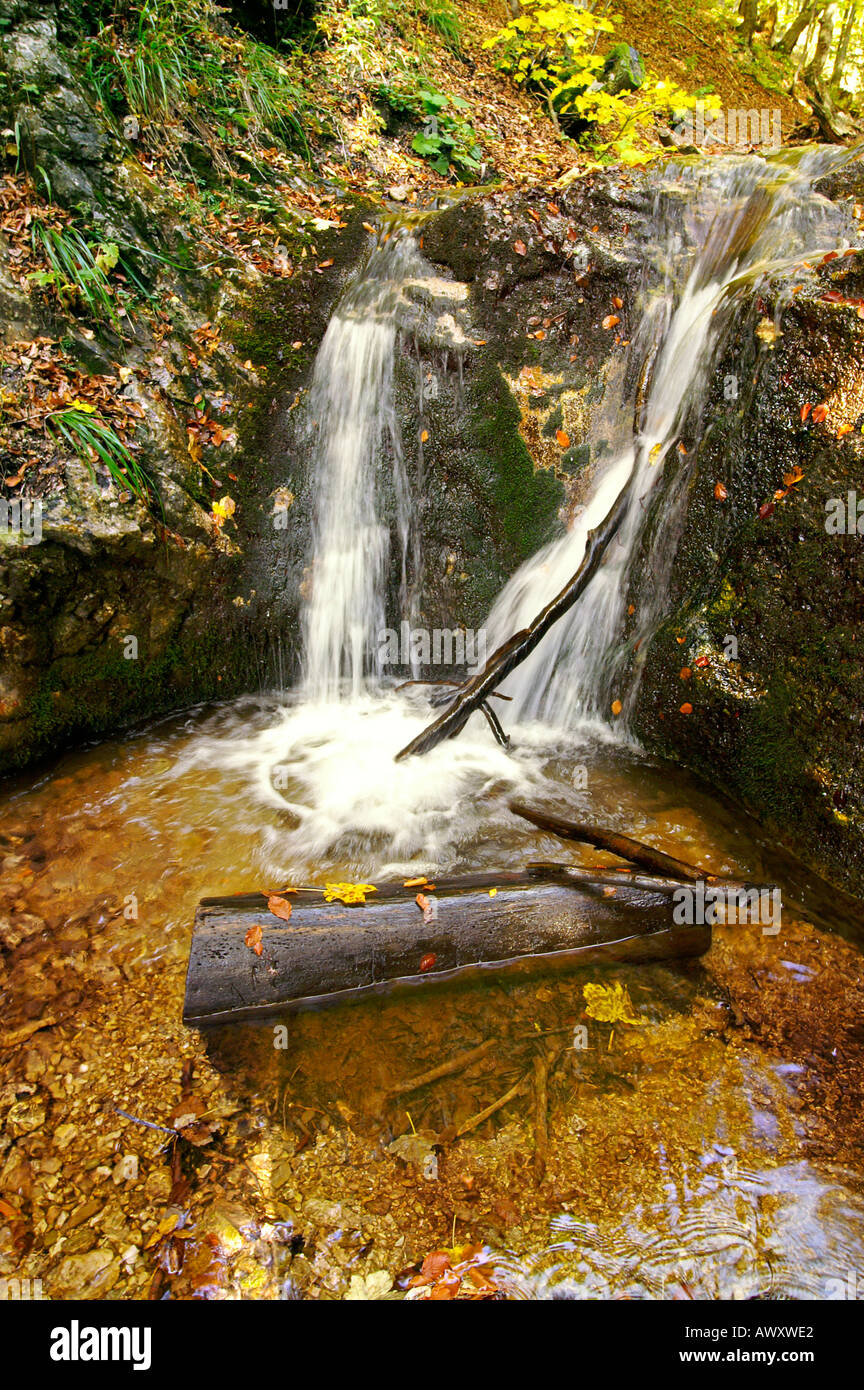 Waterfalls of autumnal Horne Diery Gorge, Mala Fatra mountain range, Slovakia Stock Photo