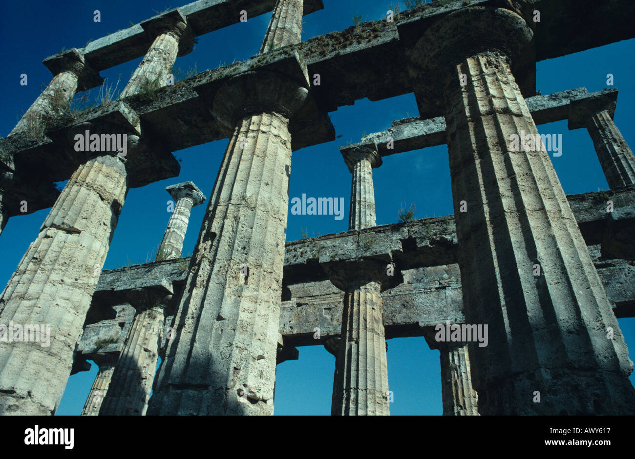 Greek Temple Paestum Campania Italy - Stock Image