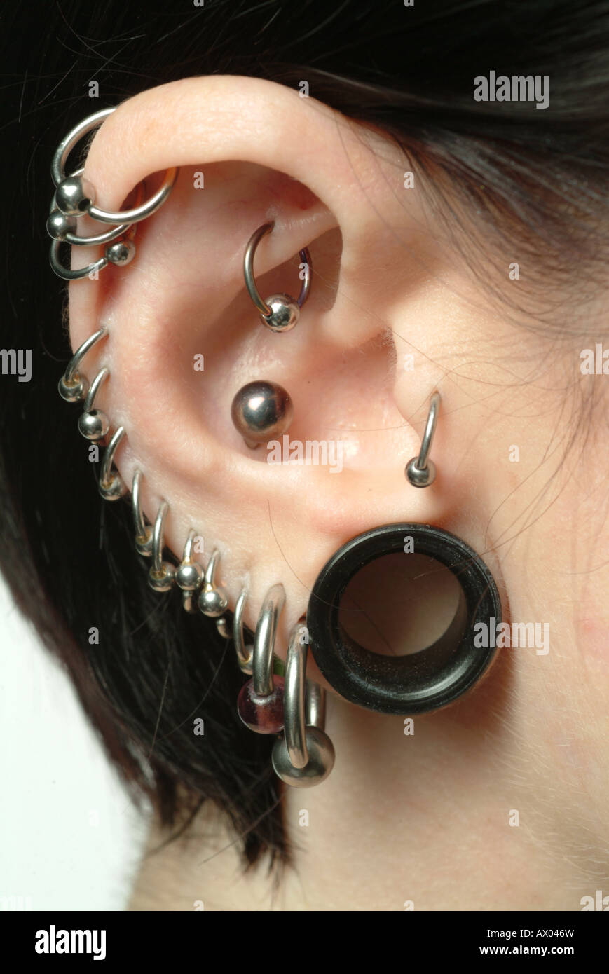 Close Up Of Ear With Multiple Piercings Stock Photo 16684944 Alamy