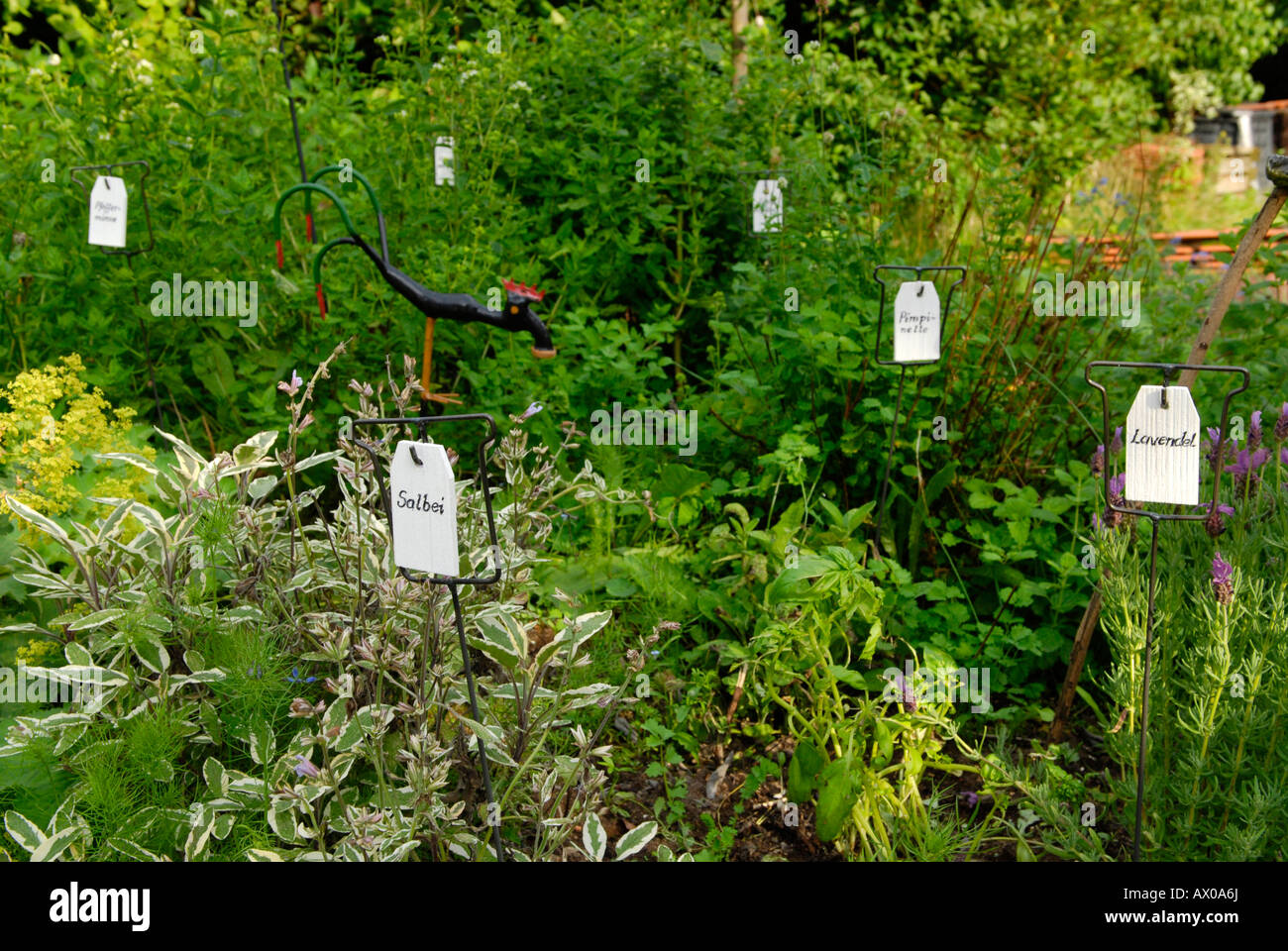 Charmant Different Kinds Of Herbs Marked By Signs In An Herb Garden   Stock Image