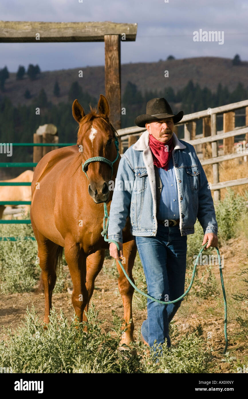 Cowboy with horse, wildwest, Oregon, USA Stock Photo