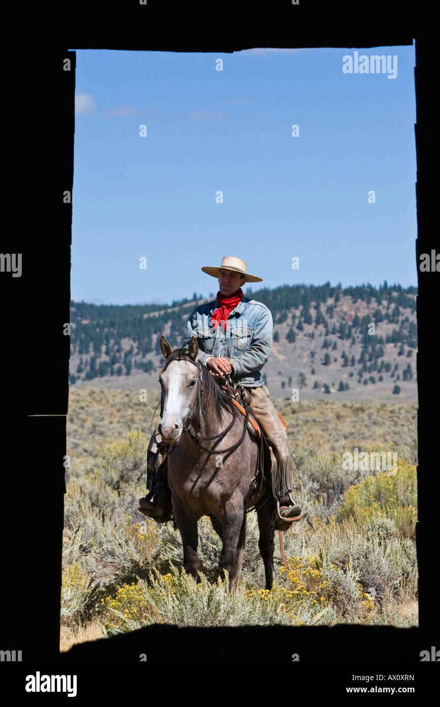 Cowboy with horse at barn window, wildwest, Oregon, USA Stock Photo ...