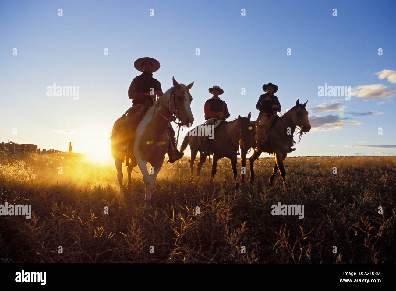 Cowboys horseriding at sunset, Oregon, USA - Stock Image