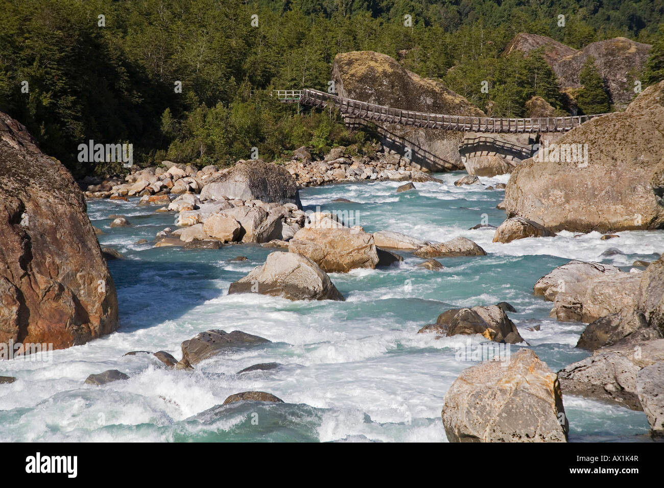 Plank bridge, Park Queulat, Carretera Austral, Patagonia, Chile, South America - Stock Image