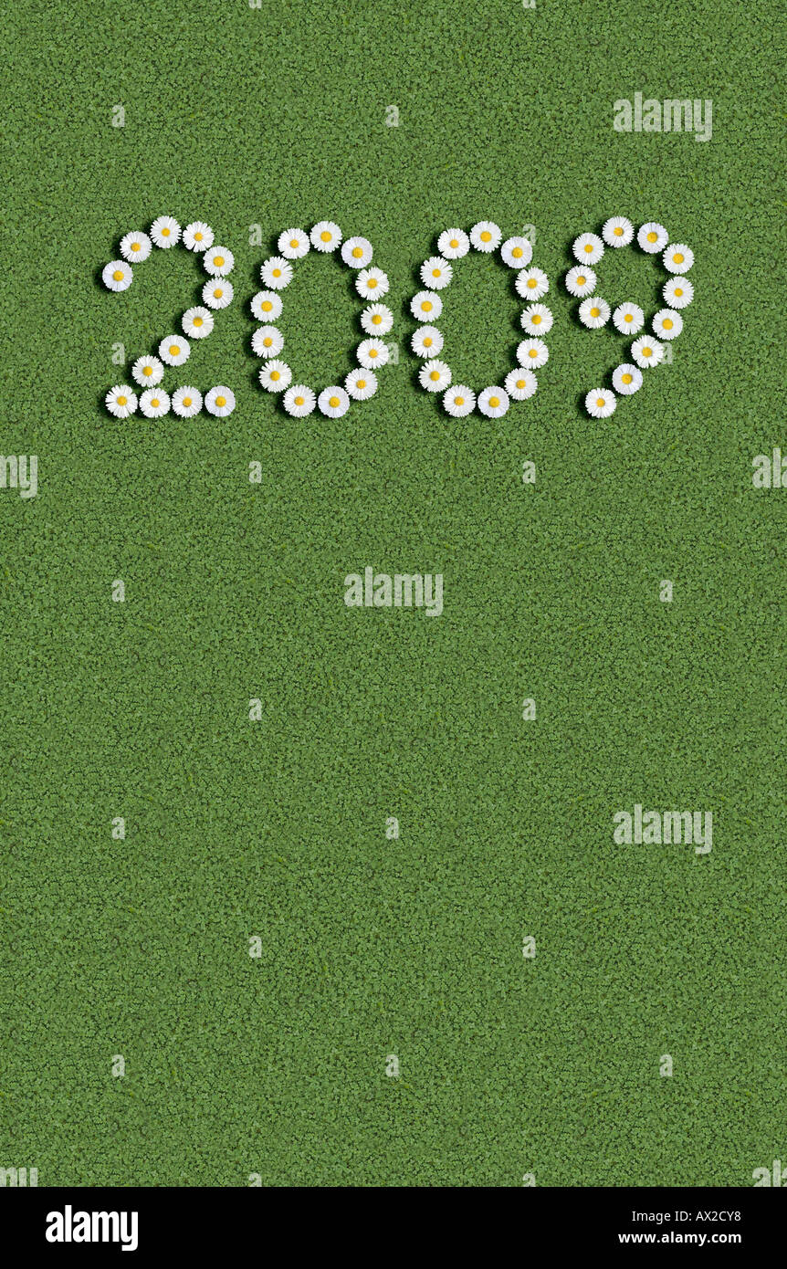 year 2009 written with flowers - Stock Image