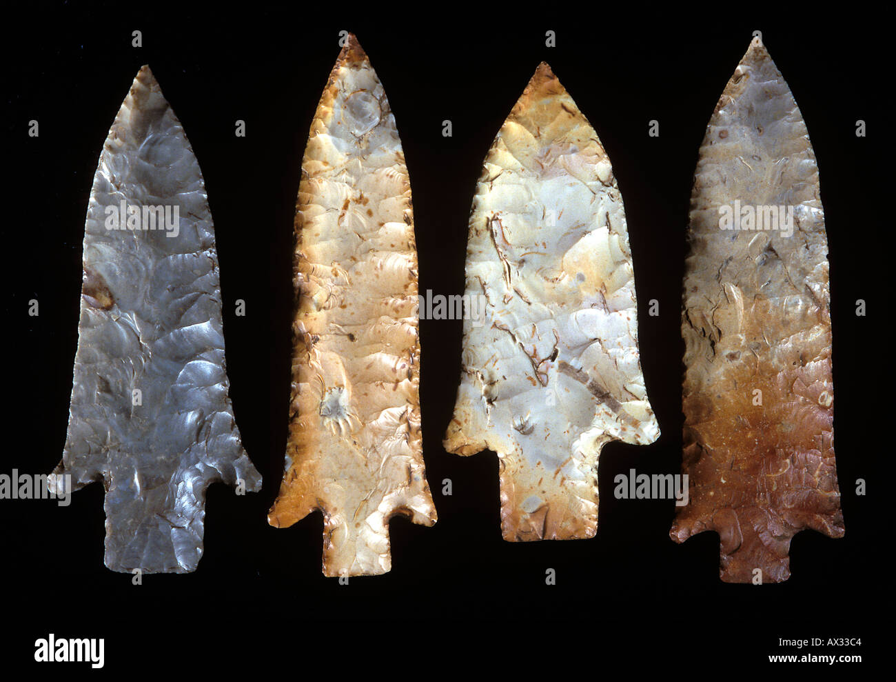Spear Points, characteristically-fluted projectile points, from the Late Archaic period (4,000 BC), found near St. Louis, Missouri - Stock Image