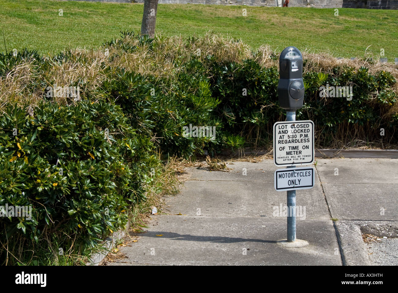 Parking metre on a sidewalk by a small hedge in St. Augustine, Florida - Stock Image