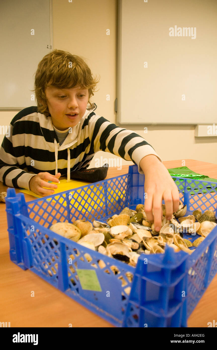 Young boy looking at sea shells he has collected Dale Fort Field Studies Council Centre Pembrokeshire Wales UK - Stock Image