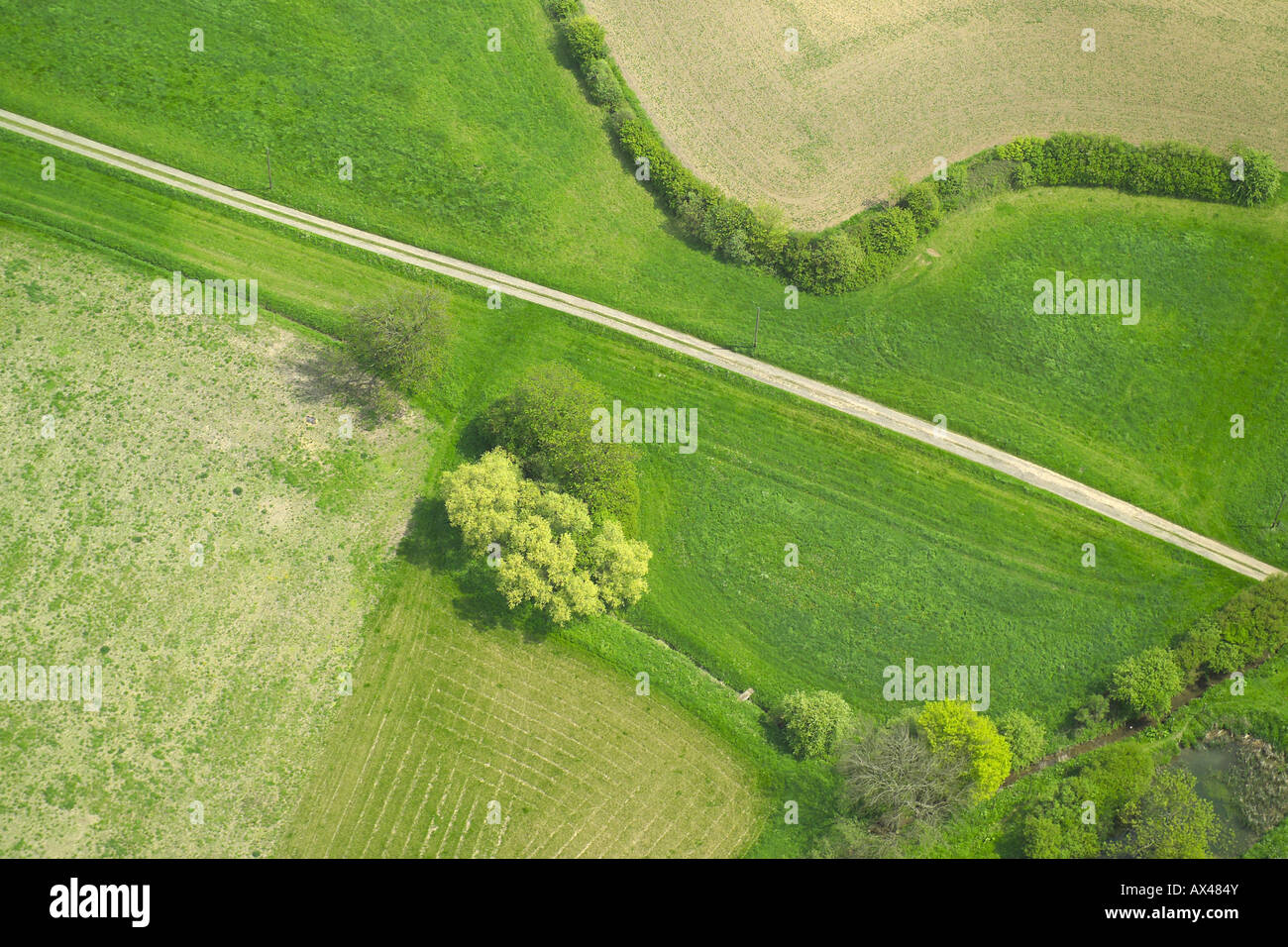 Aerial view of a farm track beside a hedge and some trees Stock Photo