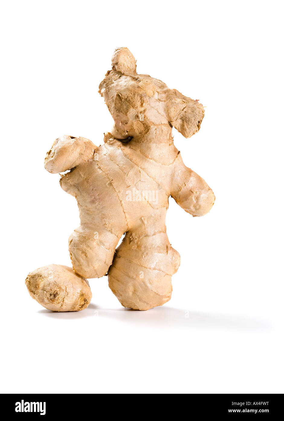 ginger root shaped like a soccer player with ball isolated on white background - Stock Image