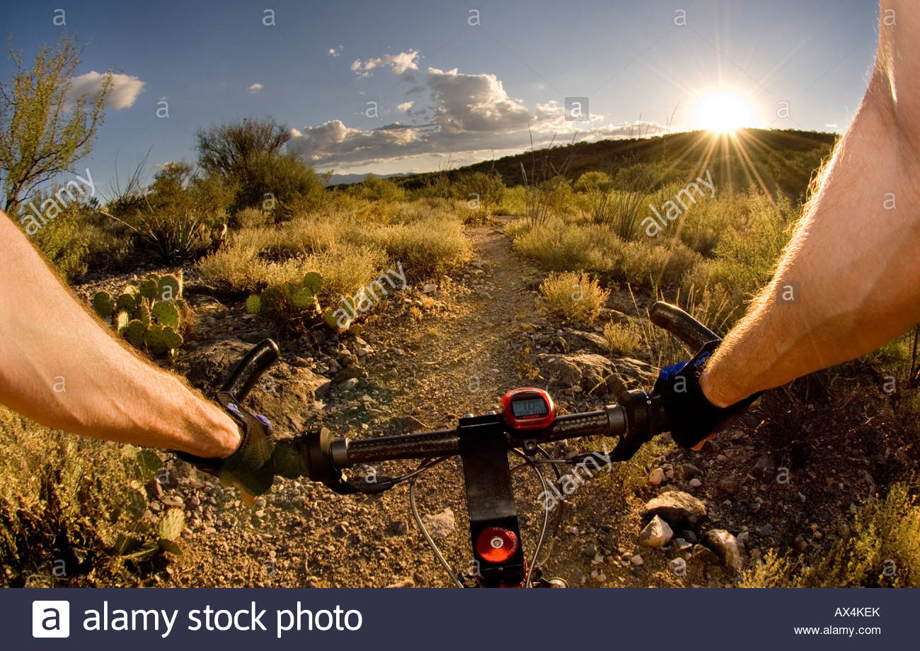 Point of View Mountain Bike Riding on the Arizona Trail East of Tucson at Sunset near the end of the trail at Three - Stock Image