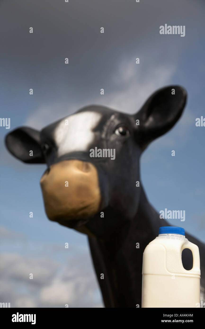 pint of milk in a plastic carton in front of a fibreglass imitation cow used for educational purposes to teach children - Stock Image