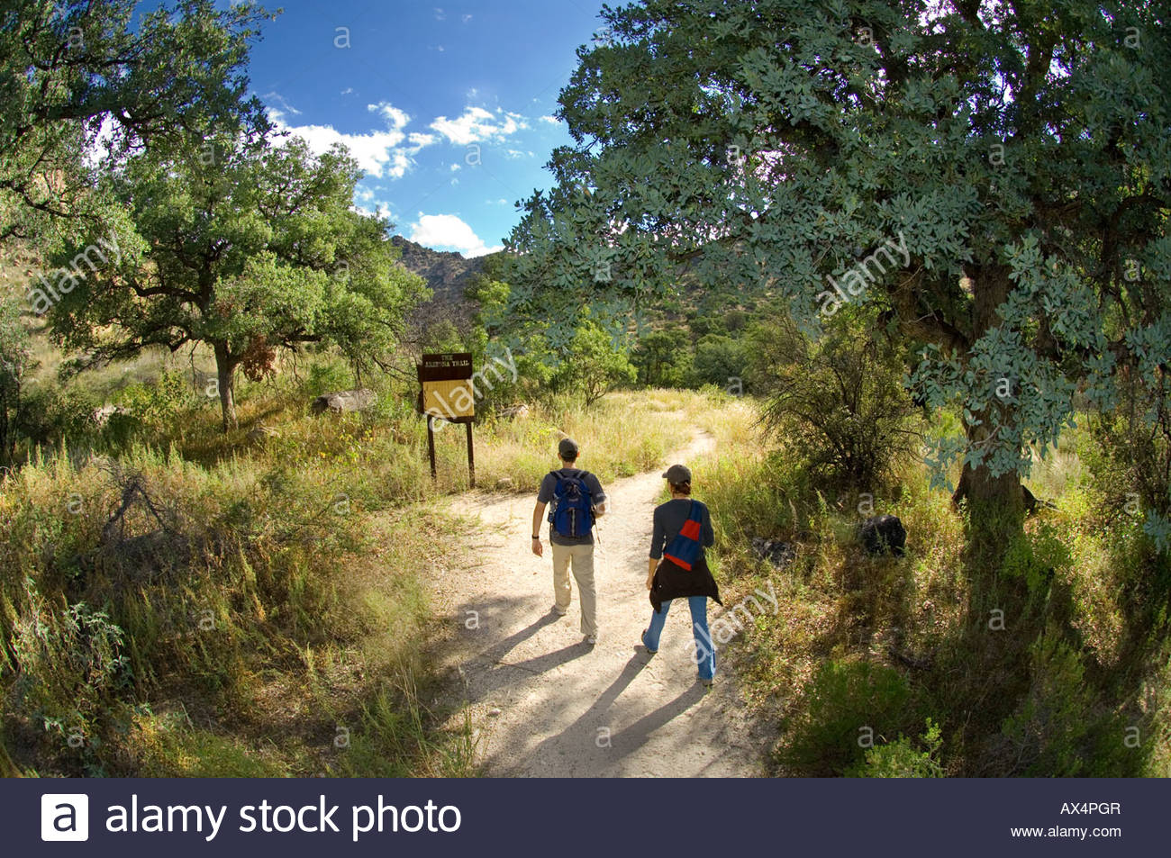 Hikers start out on a section of the Arizona Trail which leaves from Molina Basin Recreation Area in the Santa Catalina - Stock Image