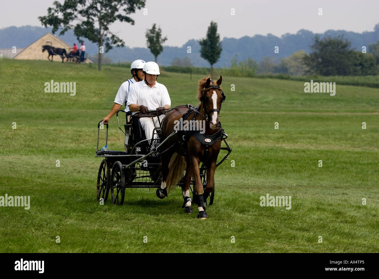 Equestrian Carriage Races. - Stock Image