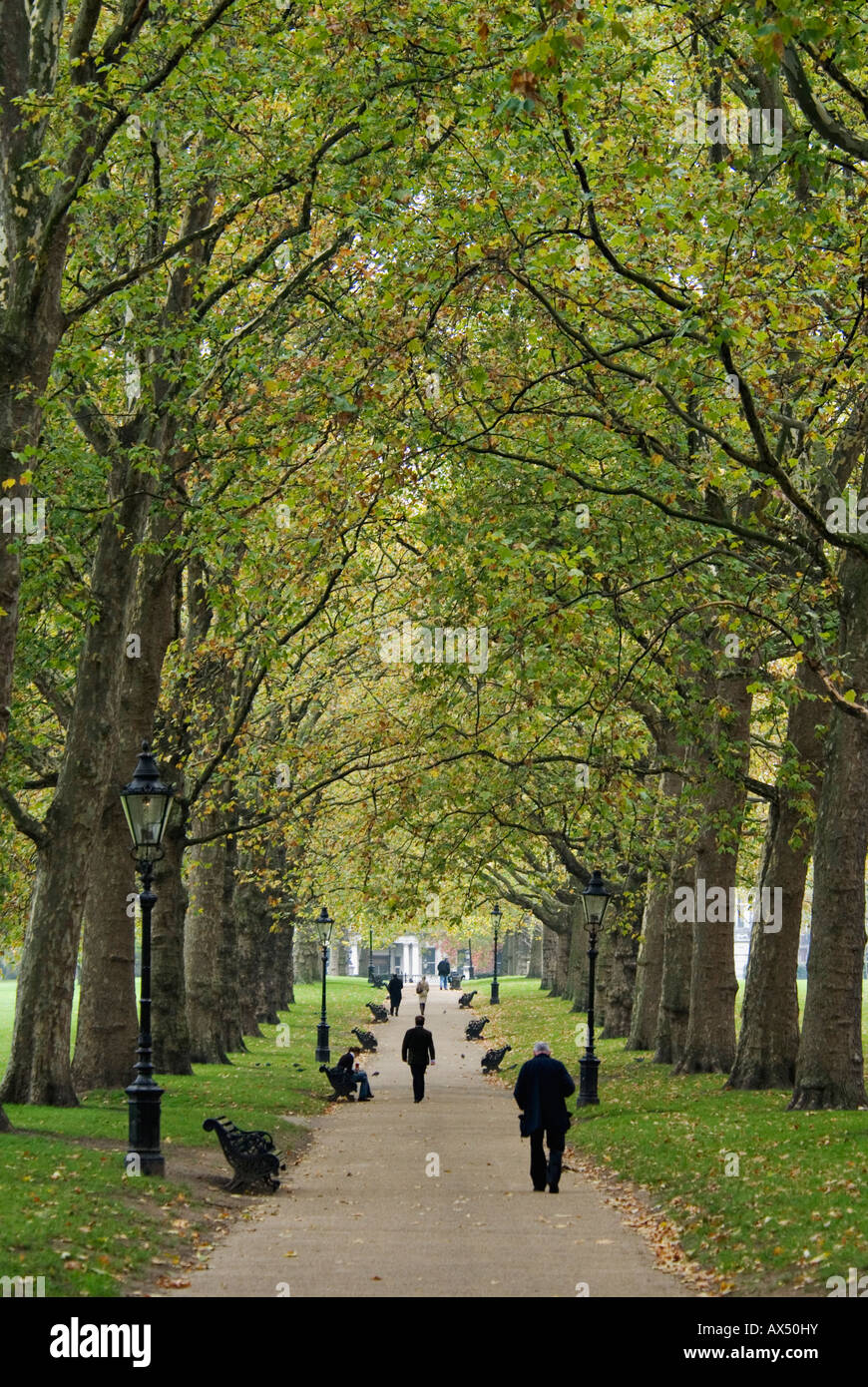 People Walking Along Tree Lined Path Through The Green Park London England - Stock Image