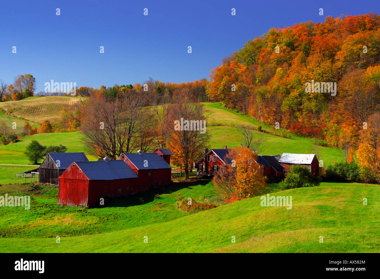 Autumn And Fall Foliage At The Jenne Farm In Reading Vermont Stock Photo Alamy
