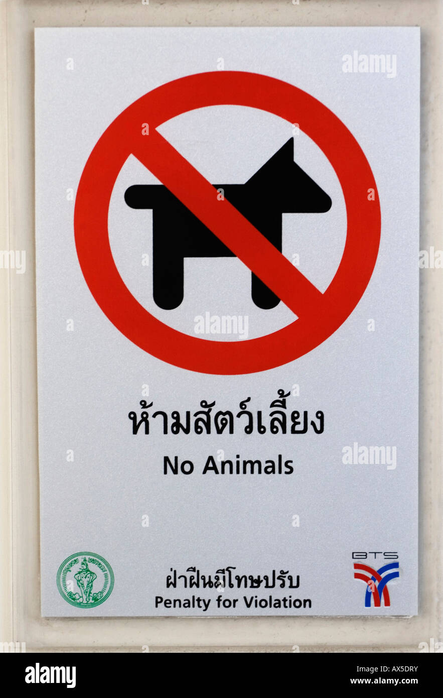 Sign - No animals permitted - Thailand - Stock Image