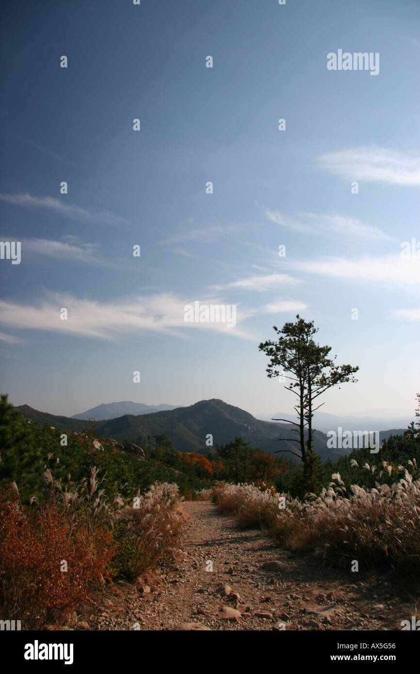 Mountain path in the Namsam area near Kyeongju in south east Korea Stock Photo
