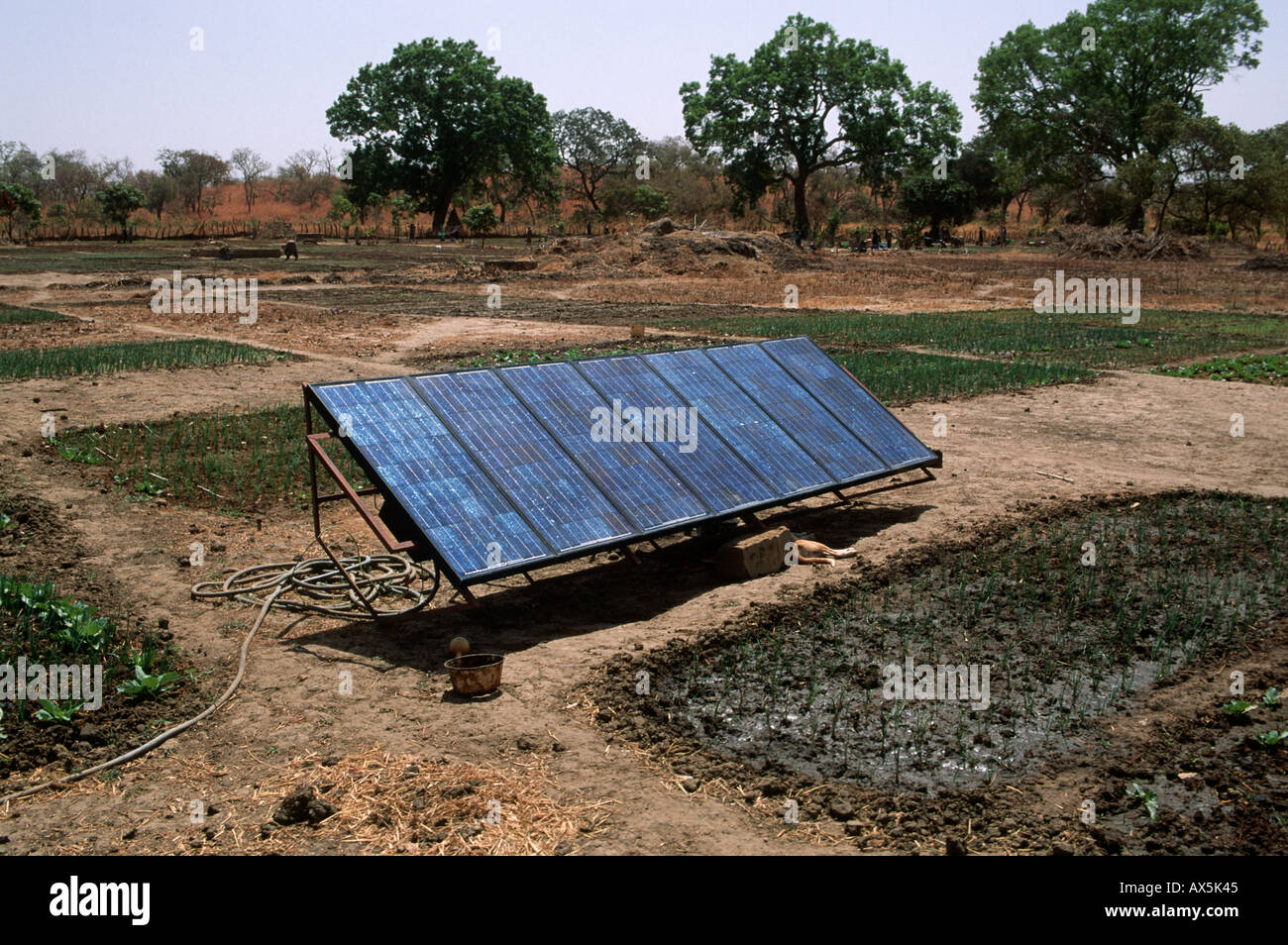Tankular, The Gambia. Solar panels at an agricultural project funded by international charity aid. Stock Photo