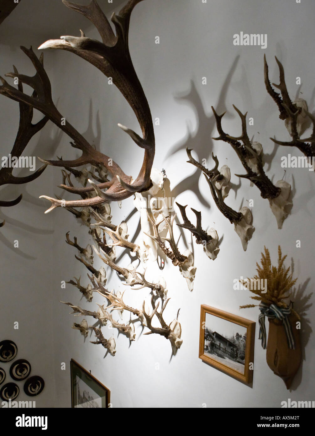 Deer antlers illuminated in a staircase at a hunting lodge, Hesse, Germany, Europe - Stock Image