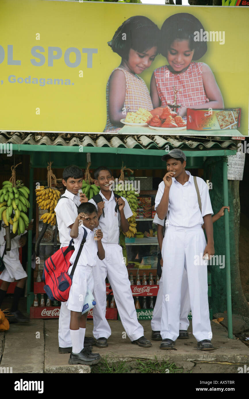 Children dressed in school uniforms waiting at a bus stop, Godagama, Sri Lanka, South Asia - Stock Image