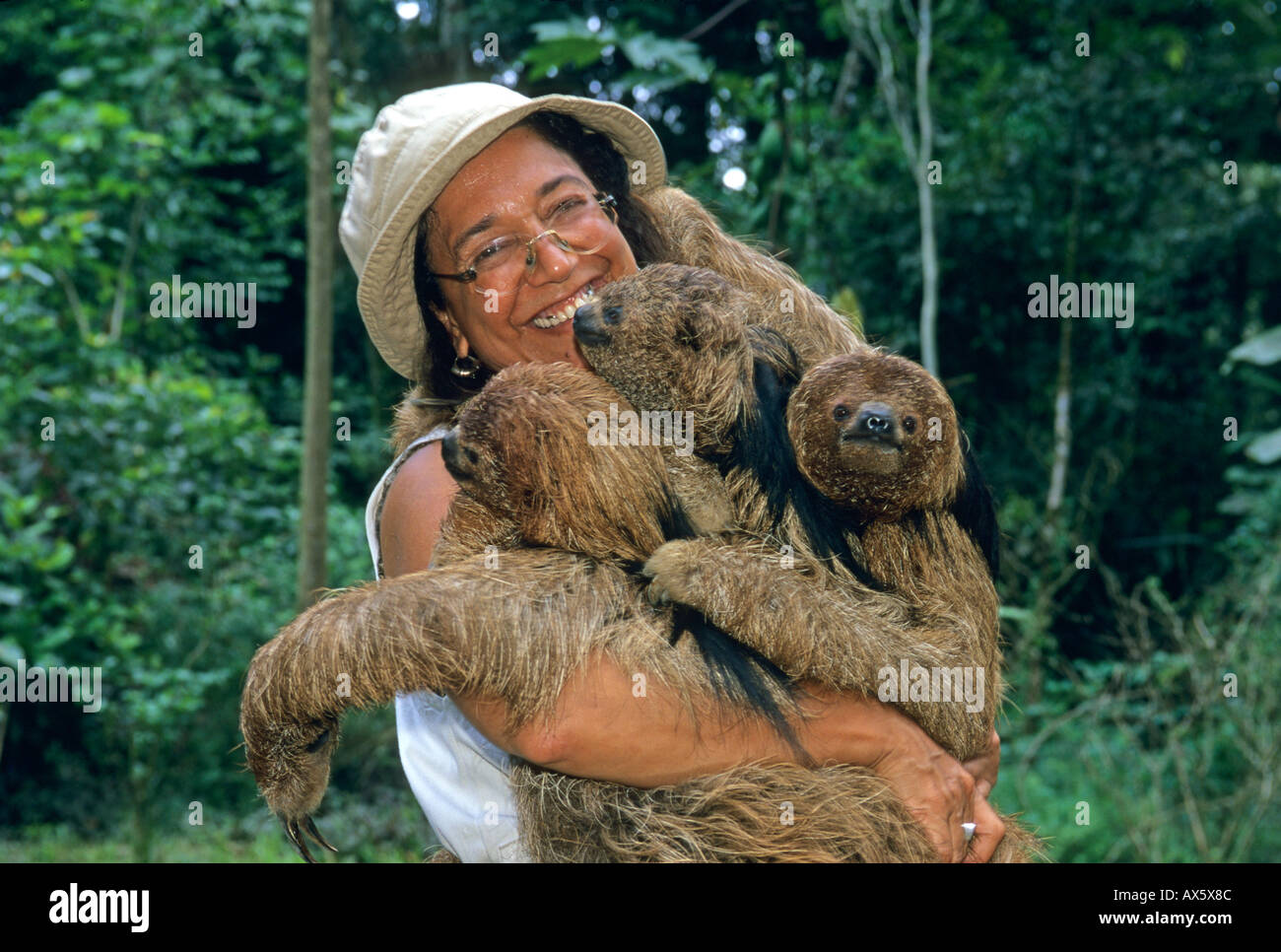 Maned Sloth (Bradypus torquatus) Endangered, with Vera Oliveira, Ai Project rehab center, Bahia State, Brazil  ATLANTIC FOREST - Stock Image