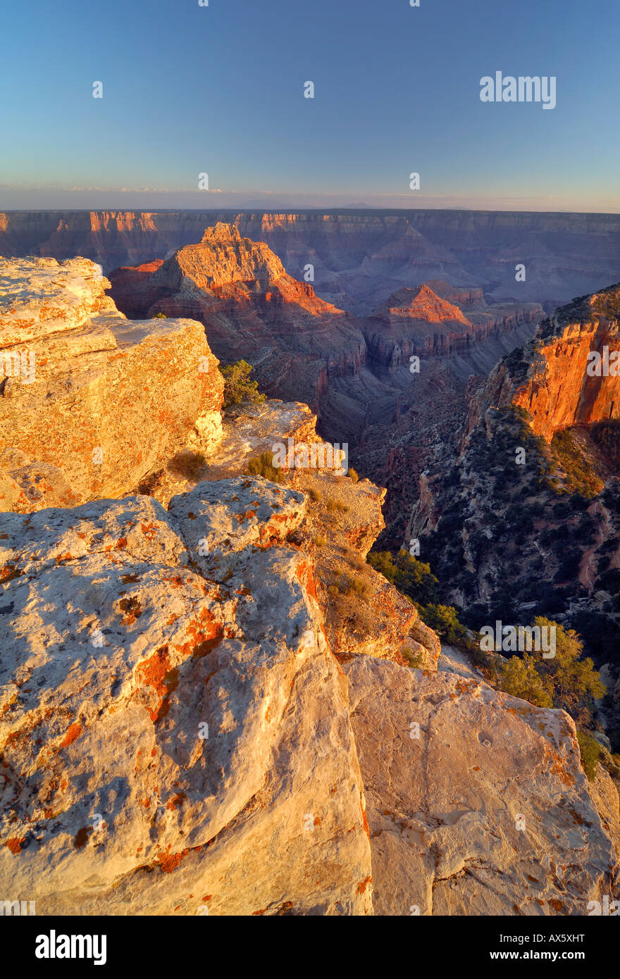 Cape Royal, North Rim, Grand Canyon National Park, Arizona, USA, North America - Stock Image