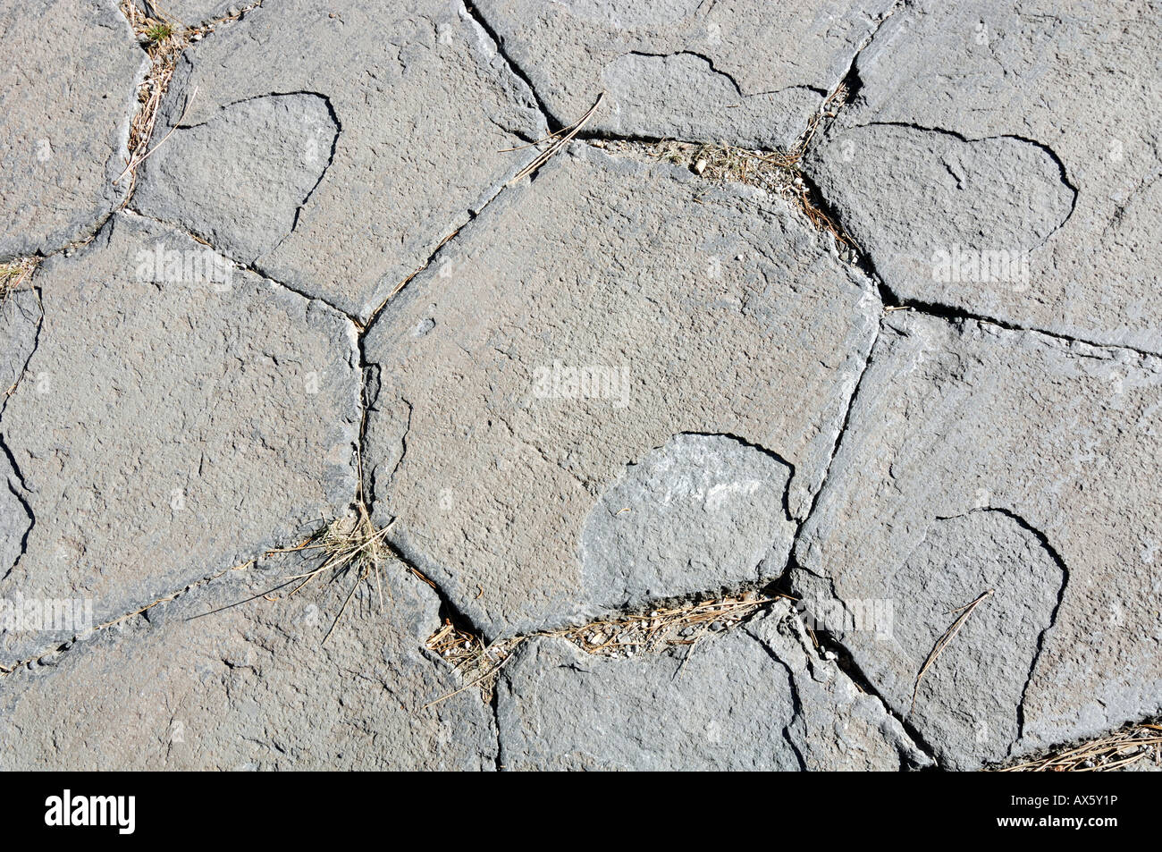Hexagonal pattern on the top surface of basalt columns at Mammoth Lake, Devil's Postpile National Monument, - Stock Image