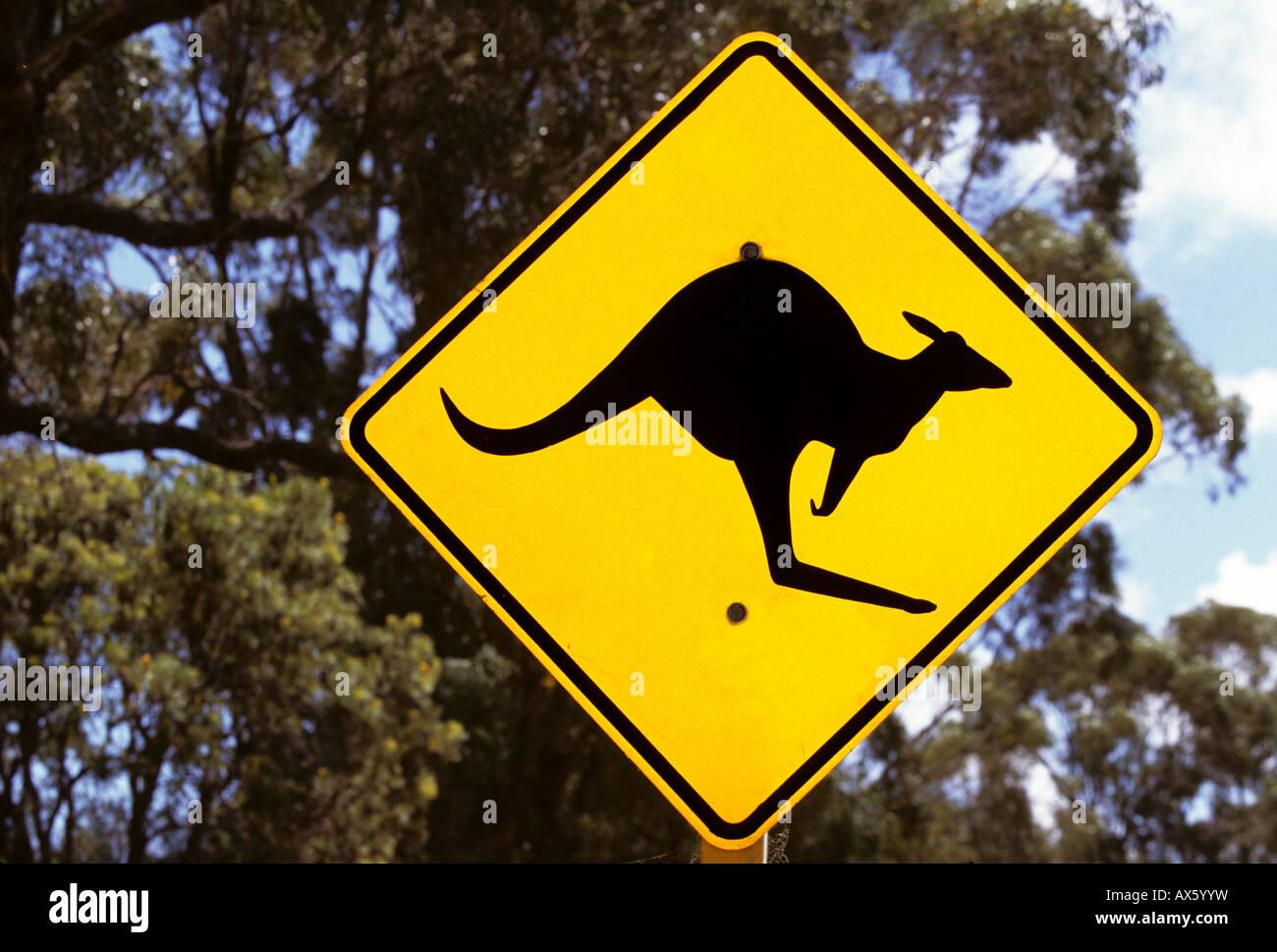 Kangaroo crossing sign, Queensland, Australia - Stock Image