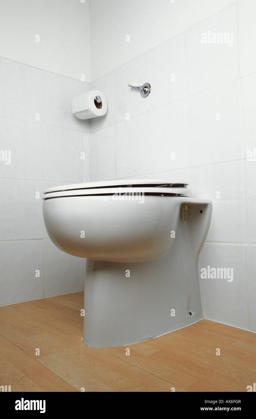 White toilet standing on laminate floor and mounted against wall ...